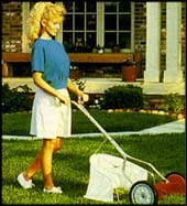 Photo: American Lawn Mower