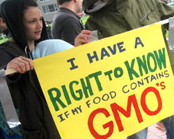 Support Grows for GMO Labeling