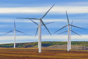wind farms fossil fuels