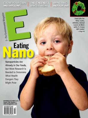 E Magazine November-December 2012