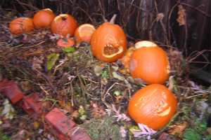Recycle Pumpkins