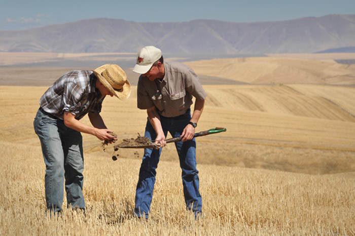 Credit: USDA NRCS photo by Ron Nichols, FlickrCC
