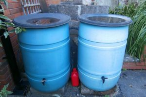 eco-friendly gardening. rain barrels. credit: Jennifer C., FlickrCC