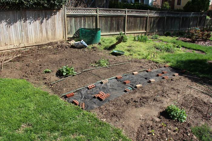 The Pros And Cons Of Diy Landscaping Emagazine Com
