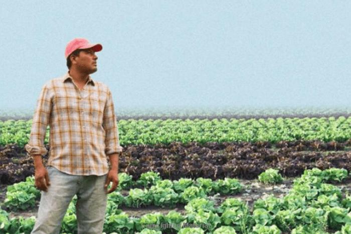 new american farmer