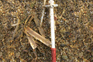 Medical Waste on Beaches