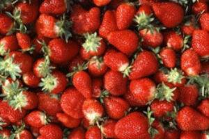 Strawberry Fields Forever (Poisoned)