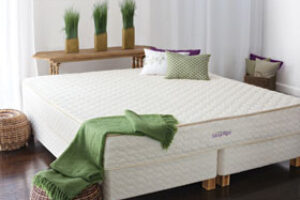E's Green Home Picks: Versatility A Super Durable Griddle/Grill, Rainbow-Colored Handmade Rugs and the Savvy Rest Mattress