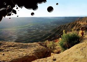 tar sands © Richard Anderson, Utah Botanical Center
