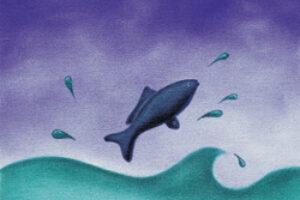 U.S. Gets Poor Grade from Ocean Experts