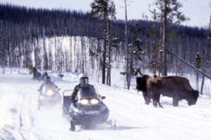 Snowmobiles and Public Lands Unacceptable Impacts on a Winter Landscape
